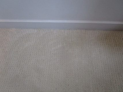 Bleach stained off white berber carpet along wall after patching carpet