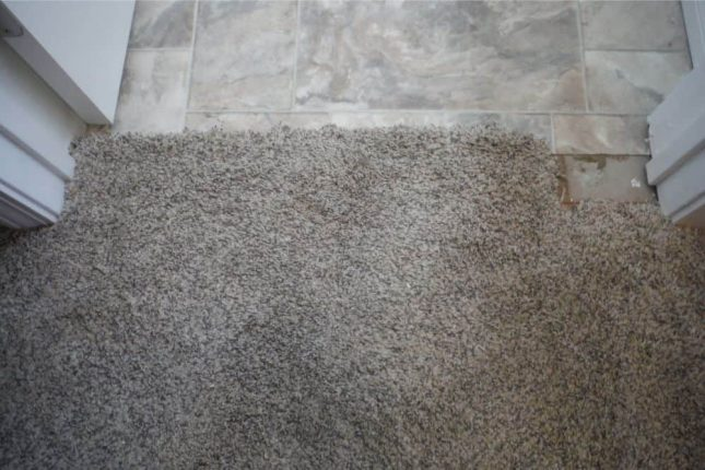 Carpet damage at transition into kitchen before patching